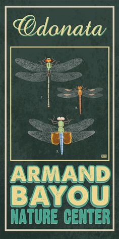 Armand Bayou Nature Center, the largest urban wilderness preserve in the country. Poster by TexasPoster.com