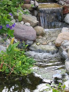 "Does your backyard landscaping need a little something extra? Just add water! ""Water transforms the backyard into an oasis of cool comfort."""