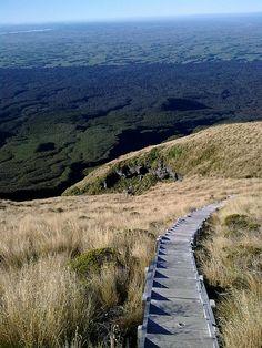 Fanthams Peak Track , Taranaki, New Zealand