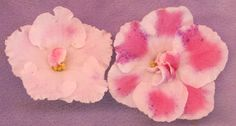 Violet Barn Blog