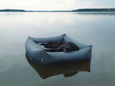 Modern Waterproof Dog Beds from Cloud7