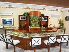 custom home aquariums (counter and wall) by Living Color Enterprises