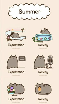 My Summer Expectations #humor #lol #funny