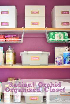 closet reveal, radiant orchid, organ idea, creat share, organized bathroom, top blogger, bathroom closet, share inspir