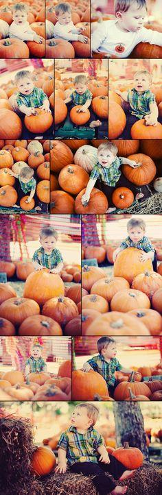 toddler pumpkin patch