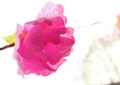diy blossom garland