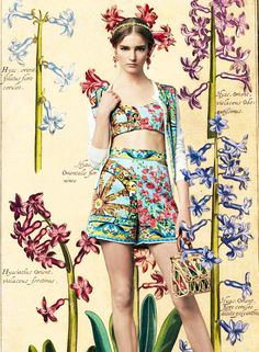 Look of the Day DolceGabbana Spring Summer 2014 Womenswear Bouganvillea and Wheel Print  Brocade Shorts and Bralet -