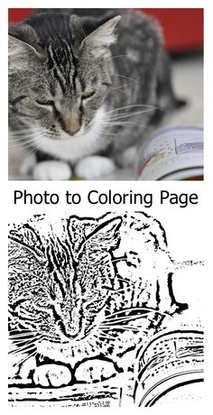 How to convert a photo to Coloring Page