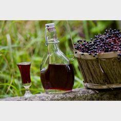 Homemade elderberry liqueur