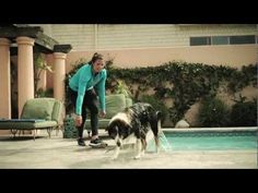 Dog Swimming -- Project: Pet Slim Down from Purina®