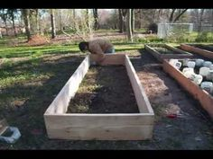 How to build raised beds for CHEAP