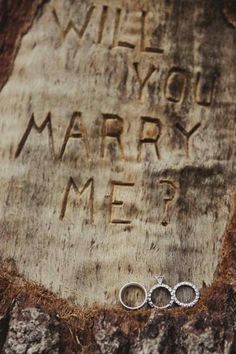 i would love to be proposed to this way:)