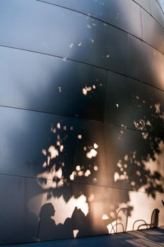 Walt Disney Concert Hall. But is this a rendering or a photo?