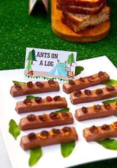 Ants on a Log snacks at a Camping Summer Party!  See more party ideas at CatchMyParty.com!
