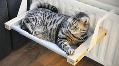 Bring a flash of Euro design style to your cat's life with the Woozy, a modern-looking hammock designed to hook onto a radiator.