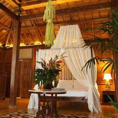 outdoor themed bedroom for teenagers | Hawaiian Themed Bedroom | Interior Design Blogs