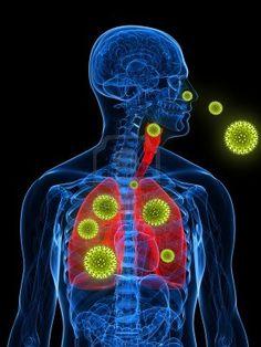 ilustracion-de-alergia-al-polen.