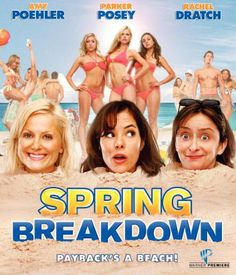Availability: http://130.157.138.11/record= Spring Breakdown / directed by Ryan Shiraki. Three thirty-something women attempt to break the monotony in their lives by vacationing on South Padre Island during collegiate spring break.