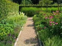 Gravel paths and borders