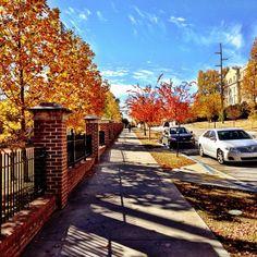 Sidewalk by the Blatt PE Center. Photo by williammichaelsexton: http://instagram.com/p/g8RX48obtT/