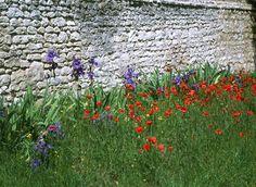 Un muret en pierres : source de biodiversité au jardin  Faune, mousses ou plantes de rocaille, il y a de la place pour tout le monde!