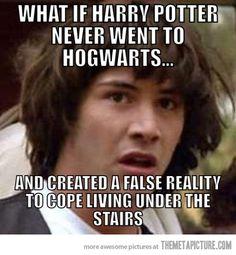 Crazy Harry Potter