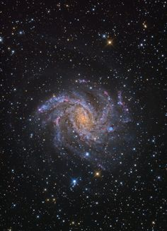 The Fireworks Galaxy, also known as NGC 6946, Arp 29, or Caldwell 12, is located 10 million light years away, on the border between the constellations of Cepheus and Cygnu