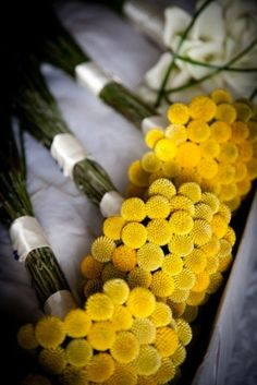 yellow wedding button mums bouquets