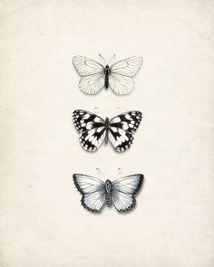 http://www.etsy.com/listing/78466582/antique-butterflies-wall-decor-natural?ref=tre-2073041490-3    http://www.etsy.com/treasury/MTEwNTM5MDd8MjA3MzA0MTQ5MA/au-naturel?index=2637