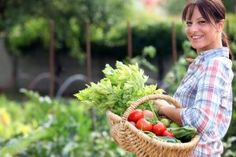 Gardening to Avoid Increased Food Prices | Stretcher.com - Have increased food prices caused you to start a garden?