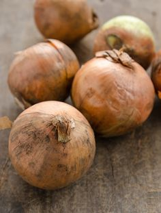 Tout savoir sur les oignons / All you want to know about onions.