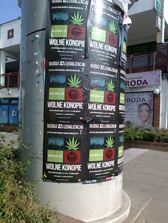 Advert by Ruch Palikota during the 2011 Polish parliamentary elections advocating the legalization of marijuana. RP is the third largest party in the Polish parliament (Seim) with about 12% of the seats. However, the legalization of 'konopie' seems to be as distant as ever, despite estimates that it would boost the Polish economy by some 3%.