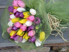 Tulips by Flower Factor, via Flickr