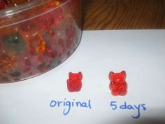 "Soak Gummy Bears in Vodka for Gummy Bear ""Shots"""