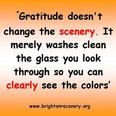 Gratitude doesnt change the scenery...