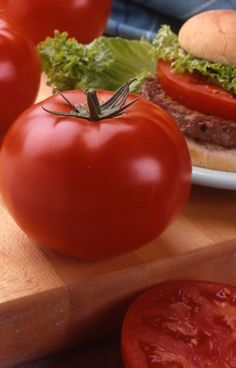 Tomato 'Big Beef' 1994 AAS Winner. This revolutionary tomato combines old-fashioned qualities with modern technology to yield one of the best tomatoes yet developed.