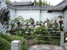 Japanese Gardens in Sydney, Australia