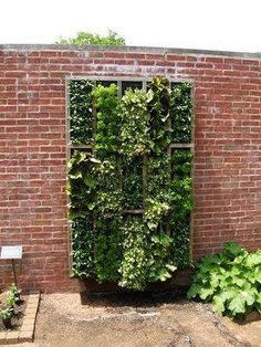 ideas for hanging gardens