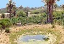 Jericho was a town Jesus passed through on His way to Jerusalem and the Cross.