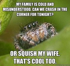hahaha omg....ok so, way to make me feel terrible for killing spiders...:\ this was strangely very sad.