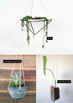 TRENDING: HANGING PLANTERS