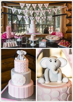 Elephant Birthday by Bakermama     TheCakeBlog.com