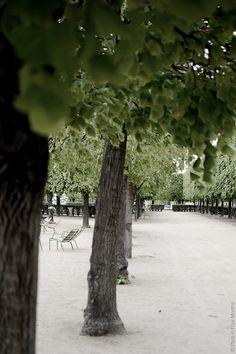 Jardin des Tuileries ; quiet garden. Paris city center.