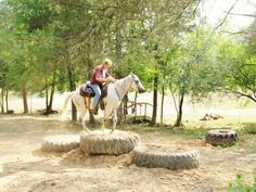 Tires | Horse Training and Obstacle Course Ideas
