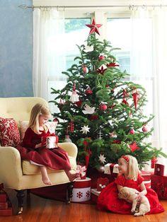 Traditional Christmas Trees