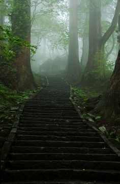 Misty path to shrines, Mount Haguro, Yamagata, Japan