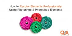 How to Recolor Elements Professionally Using Photoshop & Photoshop Elements by Tiffany Tillman