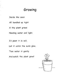 PLANTS LIFE CYCLE PLANTING SEEDS POETRY SEQUENCING COMMON CORE INC. PLANS K-1 - TeachersPayTeachers.com