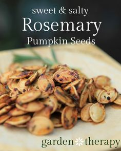 Do you like sweet snacks? Salty snacks? Make Rosemary Pumpkin Seeds with this recipe from Garden Therapy, and have both! Warning: you'd better make plenty. These go fast. || @garden_therapy