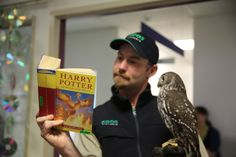 Story time with Healesville Sanctuary at Monash Children's Hospital